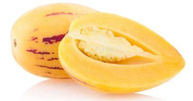 El pepino dulce y sus potentes propiedades para la salud
