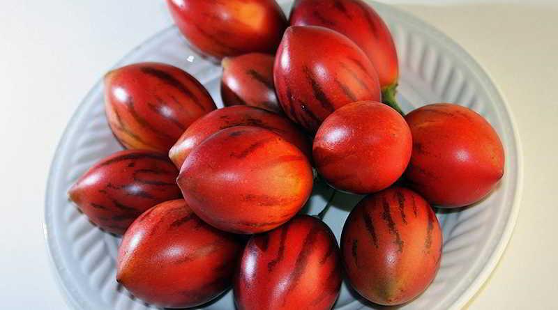 El tomate de arbol ayuda a bajar de peso